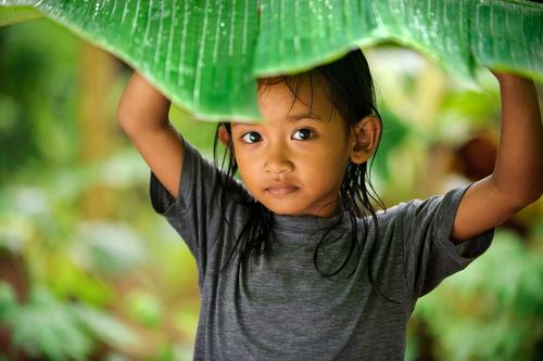 BAMBINA, INDONESIA
