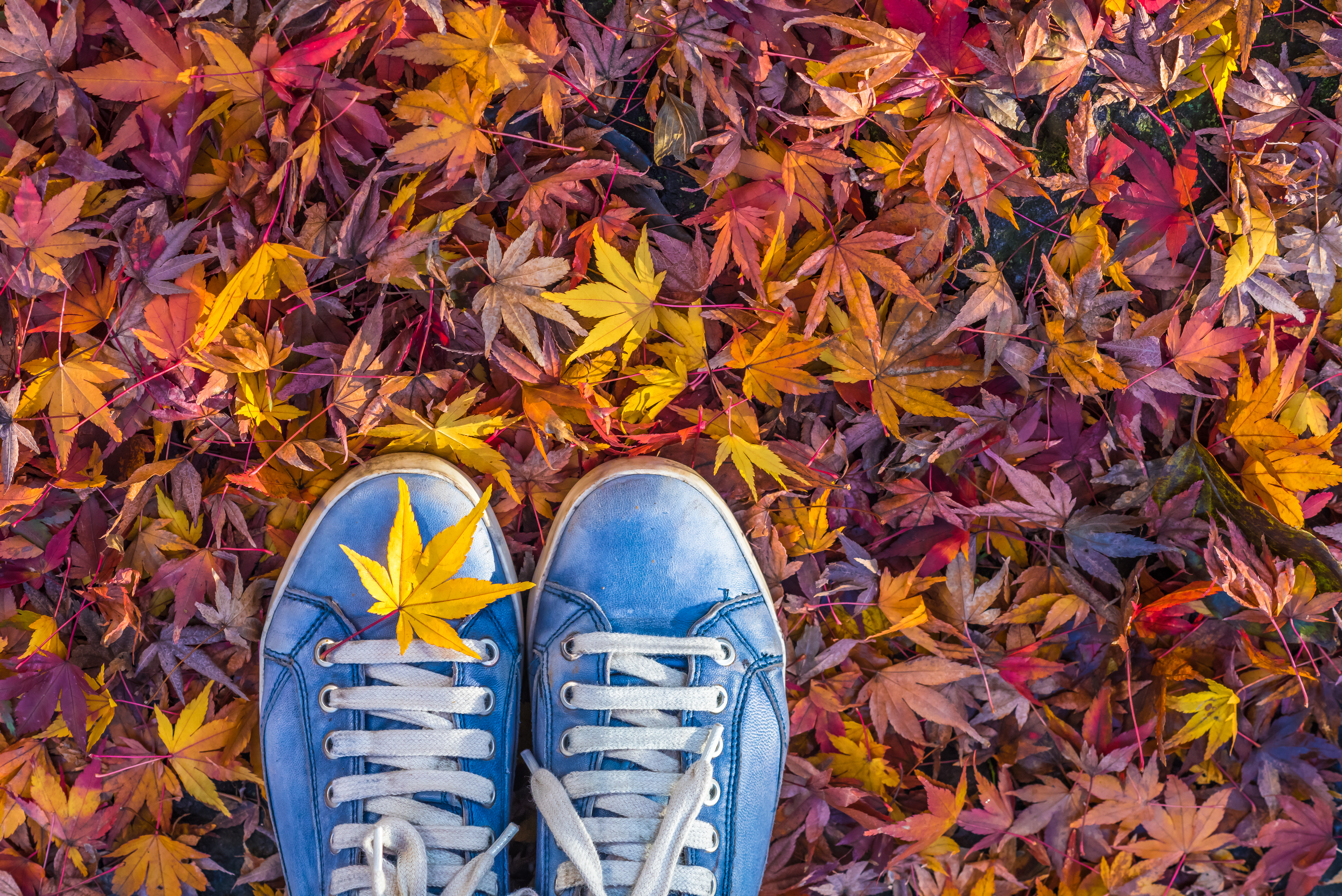 HIPSTER SHOES IN AUTUMN